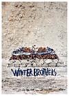Vinterbrødre (Hlynur Pálmason, DK/IS, 2017)