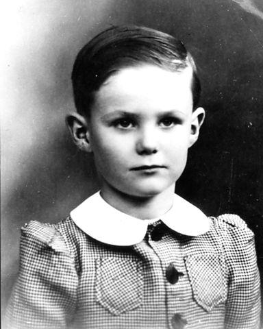 Prins Henrik, Prince Henrik